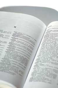 Today is Dictionary Day!